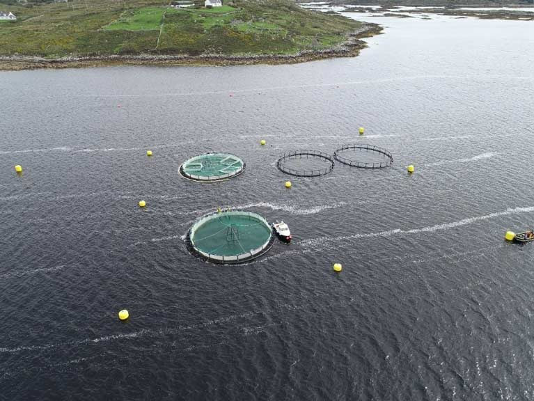 The Future of Irish Aquaculture from Mono to Multi
