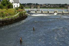 Angling at Galway city's Salmon Weir could be threatened by a new draft bye-law