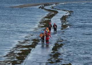 Coastguard volunteers carry the stranded dog back to dry land