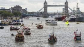BREXIT: The Thames has been the scene of the most colourful and unusual exchanges of the referendum campaign so far. Note the larger trawlers occupying where RMS St. Helena recently moored next to HMS Belfast in the Pool of London