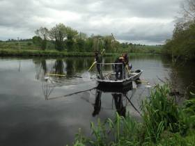 Inland Fisheries Ireland staff electrofishing on the River Barrow as part of the research