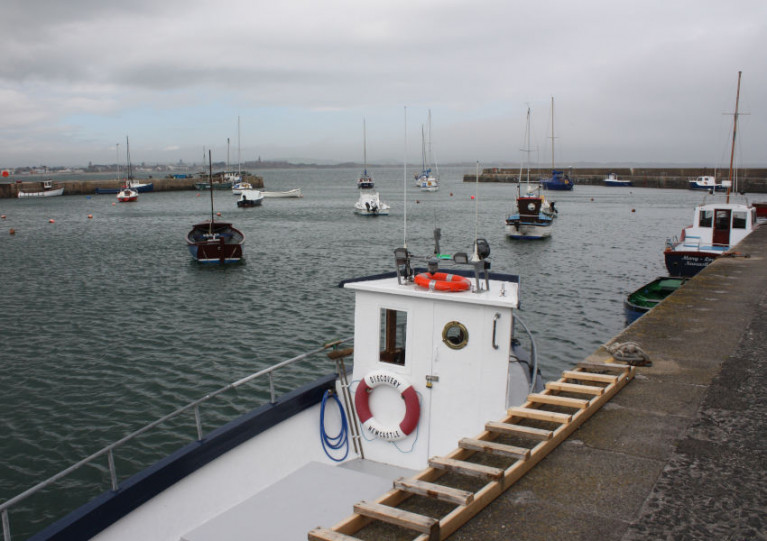 Boat Vandals In Co Down Harbour 'Putting Lives At Risk'