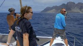 Cape Verde Humpback Whales Doc On TG4 This Weekend