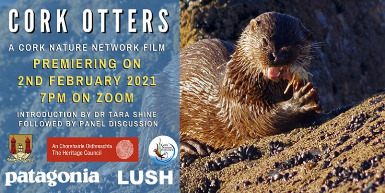 Short Film on Cork's Otters to Have Online Premiere