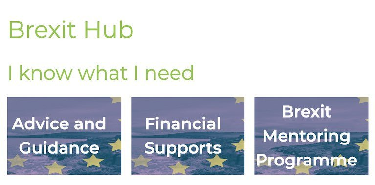 A screenshot from BIM's Brexit Hub page