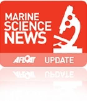 Bursary Students join the Marine Institute for Summer Science Placements