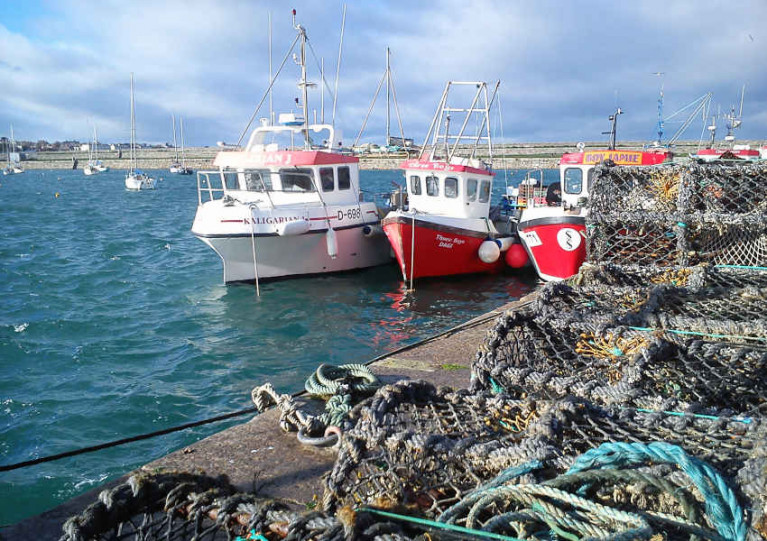New Technologies May Help Fishing Skippers Avoid Unwanted Catches