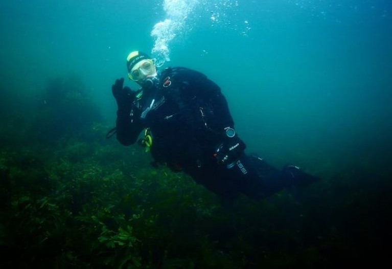 Virtual Dives in Strangford Lough