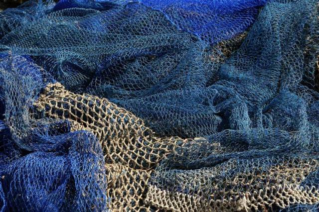 It would take nearly 2.5 hours to walk along the length of confiscated illegal netting