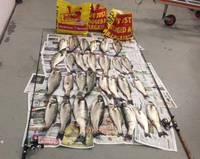 29 Bass & Angling Rods Seized by Inland Fisheries on South East Coast