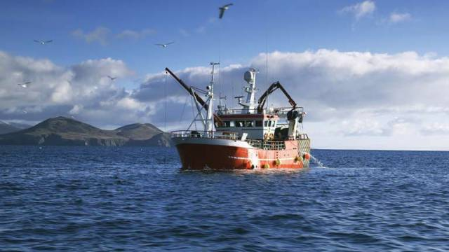The pilot quota balancing policy for whitefish stocks will apply from 1 July 2019