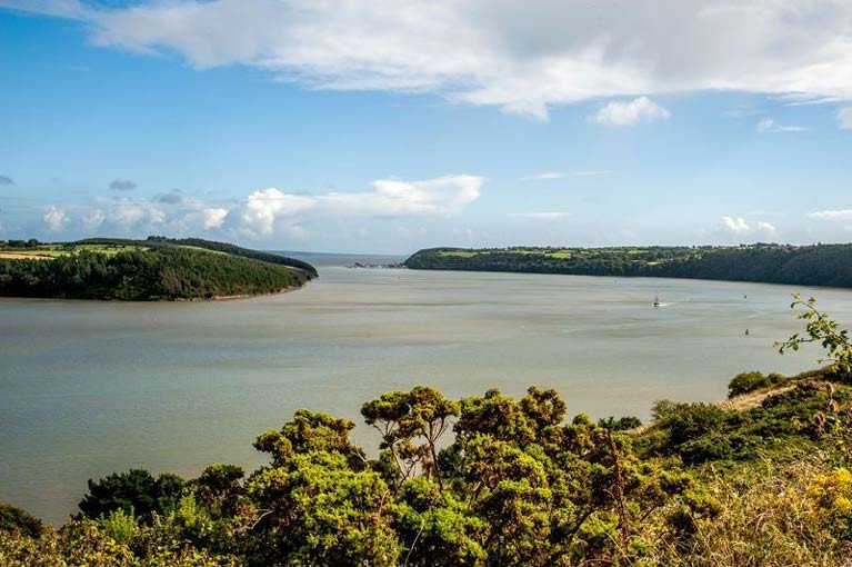 Waterford estuary – permission has been quashed to dredge for razor shells