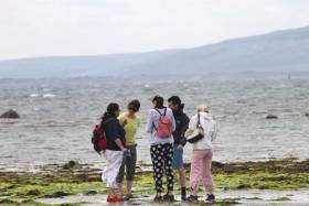 New Marine-Themed CPD Course For Primary Teachers In Galway