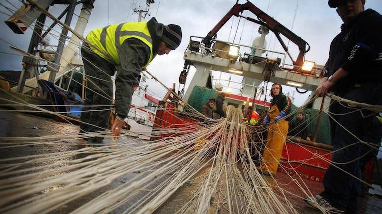 Up to 30 per cent of whitefish, including haddock, caught by Killybegs and Greencastle vessels is taken around Rockall.