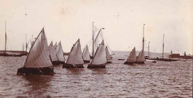 This fleet of ten singled-handed Water Wags are racing in Kingstown Harbour in the 1890s.