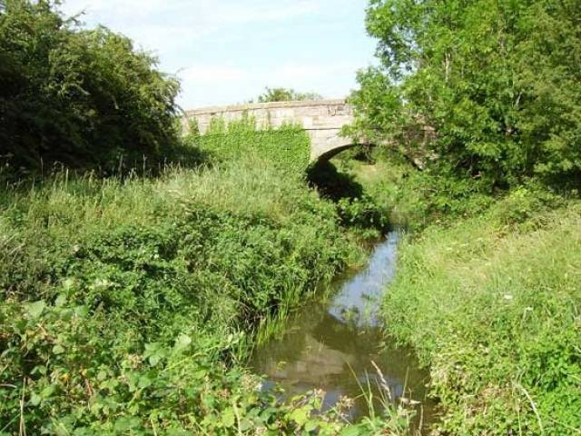 An overgrown section of the Ulster Canal at Tyholland