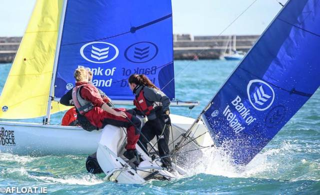 UCD Sailing Club in action in Firefly dinghies in Dun Laoghaire Harbour last weekend
