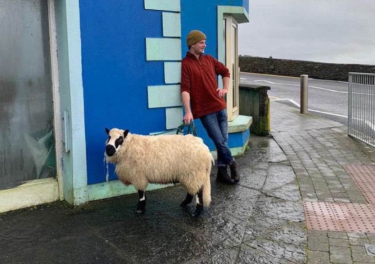 Surfing enthusiast Johnny Casey with the rescued sheep after her cliff slip drama