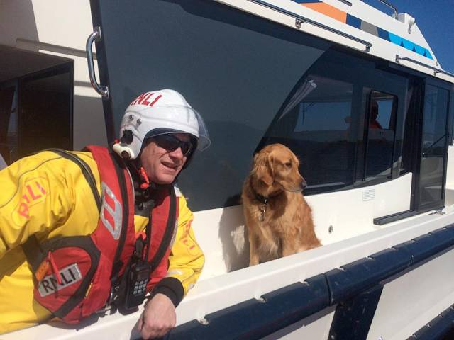 One happy dog in the care of Lough Ree RNLI after a cruiser grounded on the Long Shoal on Monday morning