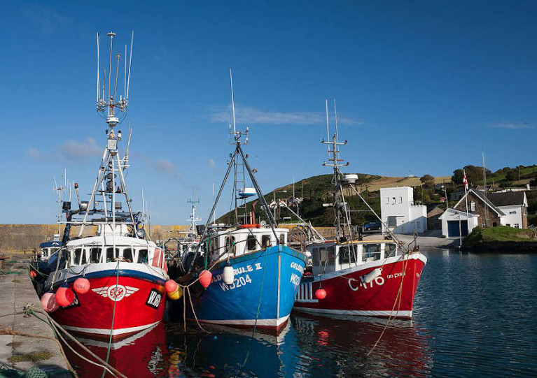 File image of fishing trawlers at Helvick Head in Co Waterford
