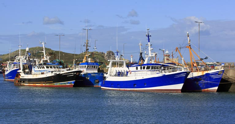 Fishing boats in Howth Harbour in County Dublin