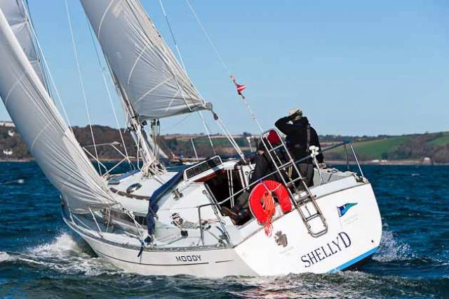 Michael Murphy's Shelly D sailing in Cork Harbour