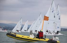 For Sale one J/80 fleet ready to race