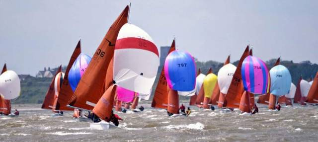 There are 43 entries for the Squib Championships at Holyhead Sailing Club