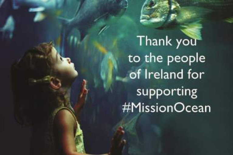 More Than 1,000 In Ireland Contribute To Citizen Survey On Health Of Marine & Freshwater Environment