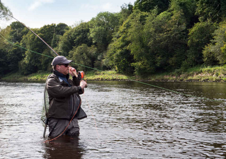 Anglers in Foyle & Carlingford Asked to Play Their Part in Conserving Salmon & Trout