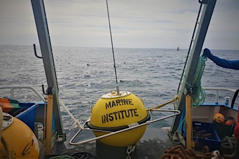 The wave buoy is  deployed in Brandon Bay on the 1, December 2020