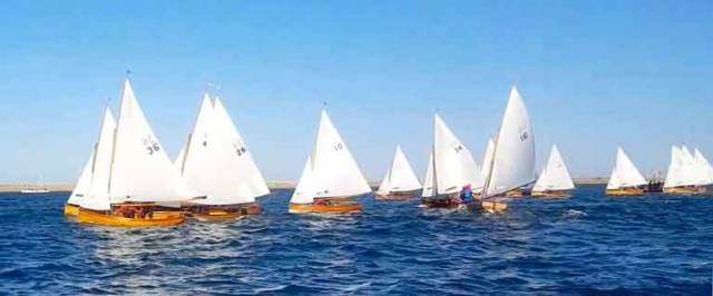 The Starboard end of the line paid dividends for the Water Wags this week. Scroll down for the start line video