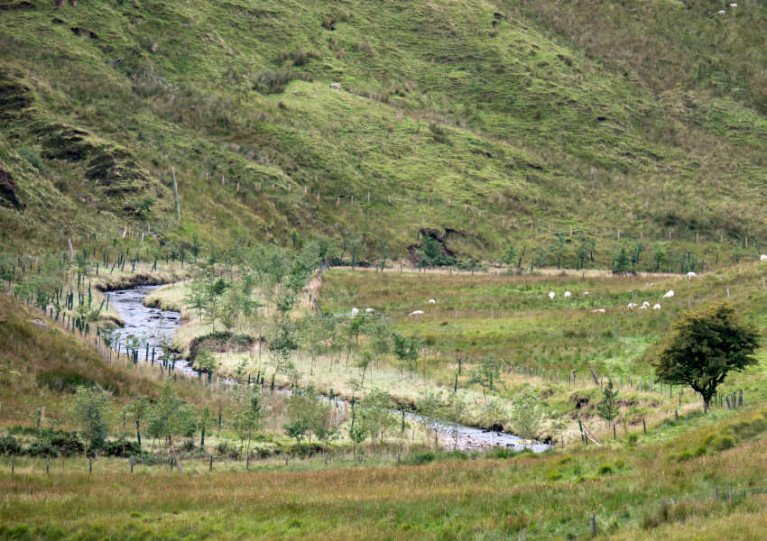 Enhancement works on the River Roe which runs from the Sperrins to Lough Foyle