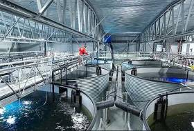 A land-based fish farm