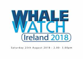 All-Ireland Whale Watch Day Is A Week Away
