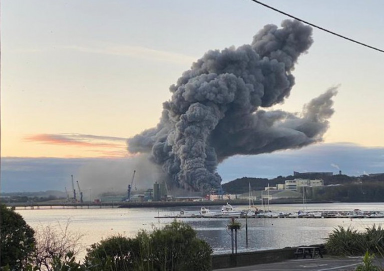 A smoke plume rises from the fire at the grain storage facility on Ringaskiddy's deepwater quay