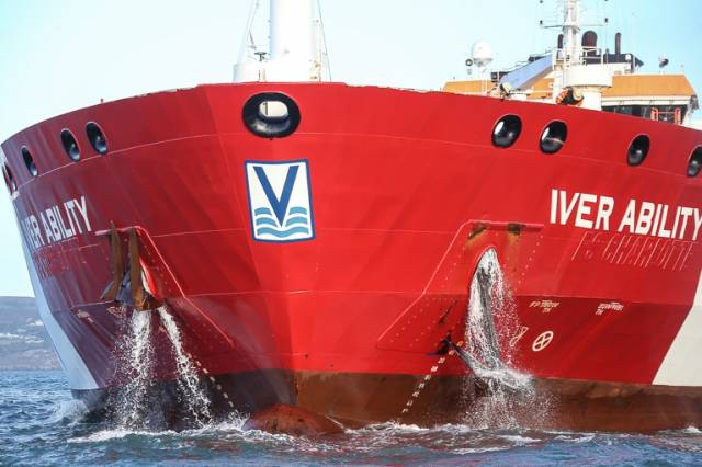 Iver Ability – a 'reaction' onboard the Asphalt/Bitumen Tanker led to its long term anchorage on Dublin Bay from August 2016 to January 2017