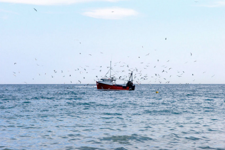 File image of a British fishing vessel