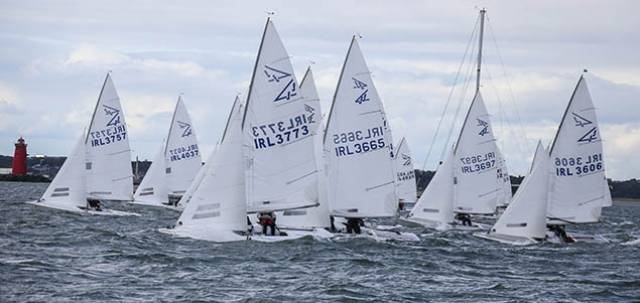 Big turnout for DBSC Flying Fifteens