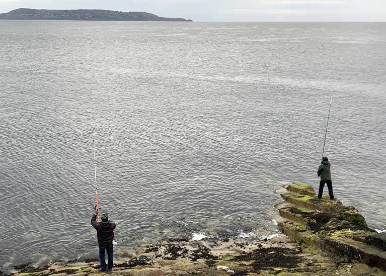 An online survey seeks to collect information on the behaviours, attitudes and catch preferences of all Irish sea anglers