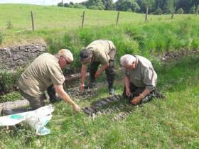 Inland Fisheries Officers assess the fish kill death toll in Claremorris